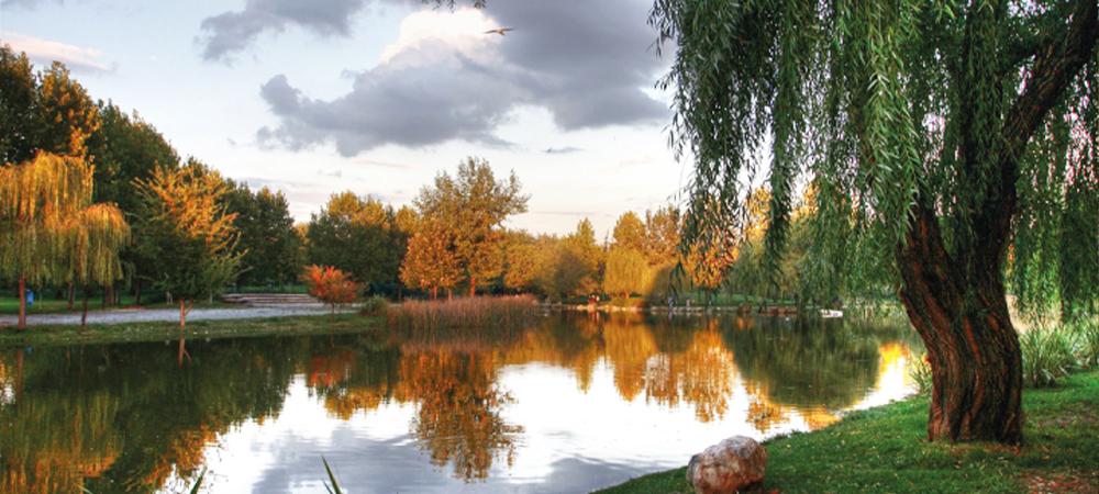 Botanik Park Bursa